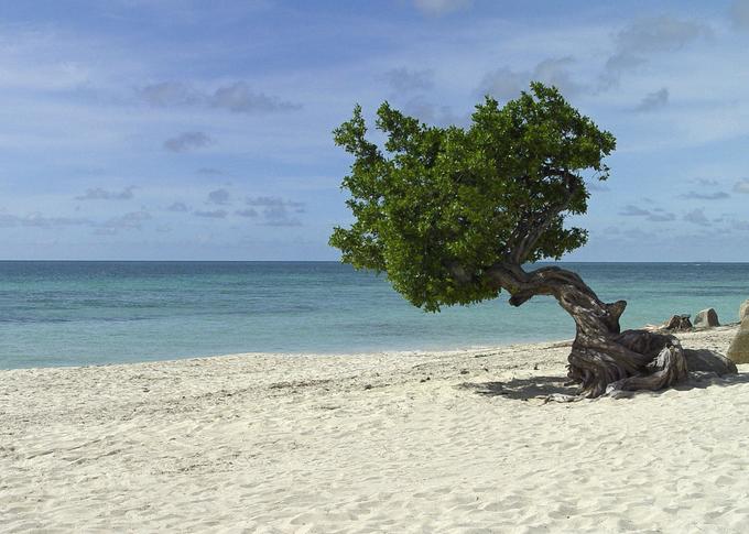 Top 5 những bãi biển đẹp nhất thế giới